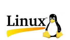 有哪些领域在使用Linux操作系统?